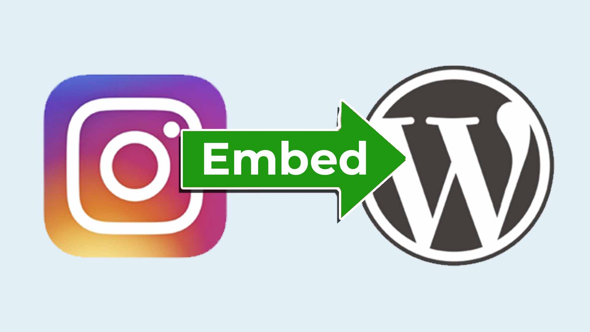 How to embed Instagram Post into WordPress - Cover