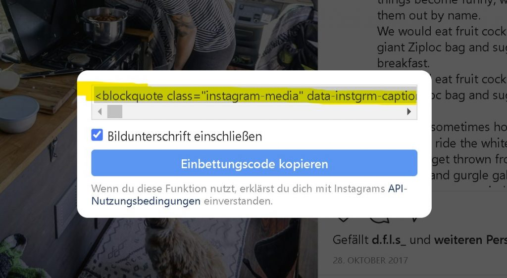 Step 04 - Copy Code Snipet from Instagram